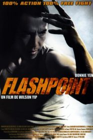 Flashpoint streaming vf
