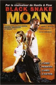 Black Snake Moan streaming vf