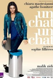 Un chat un chat streaming vf