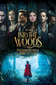 Into the Woods : Promenons-nous dans les bois streaming vf