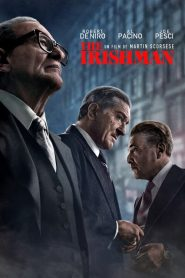 The Irishman streaming vf