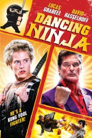 Street Dancing Ninja streaming vf