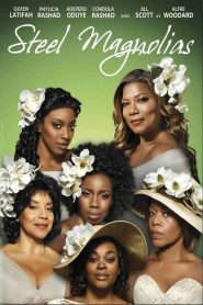 Steel Magnolias streaming vf