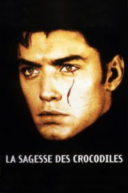 La Sagesse des crocodiles streaming vf