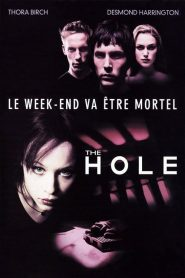 The Hole streaming vf