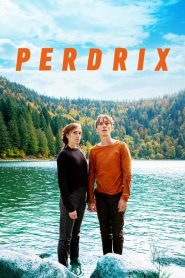 Perdrix streaming vf
