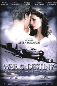War And Destiny streaming vf