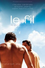 Le fil streaming vf