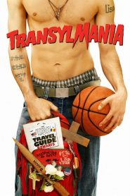 Transylmania streaming vf