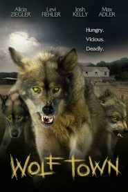 Wolf Town streaming vf