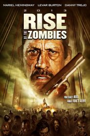Rise of the Zombies streaming vf