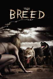 The Breed streaming vf