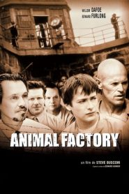 Animal Factory streaming vf