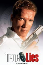 True lies streaming vf