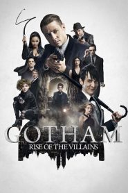 Gotham streaming vf