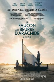 The Peanut Butter Falcon streaming vf