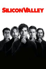 Silicon Valley streaming vf