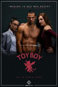 Toy Boy streaming vf
