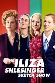 The Iliza Shlesinger Sketch Show streaming vf