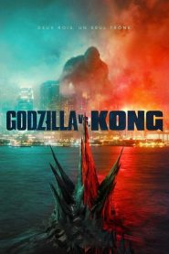 Godzilla vs Kong streaming vf