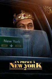 Un prince à New York 2 streaming vf